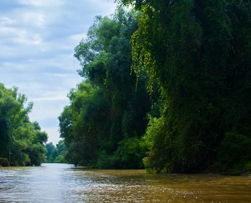Calator prin Delta Dunarii si Tulcea