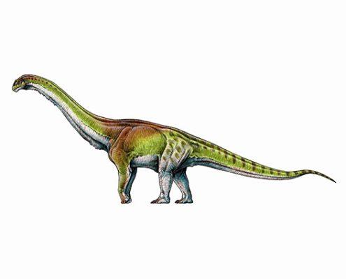 Jurassic park si femeile autentice