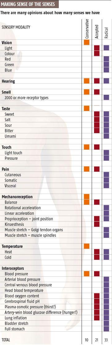 Lista Emotiilor - Infografic